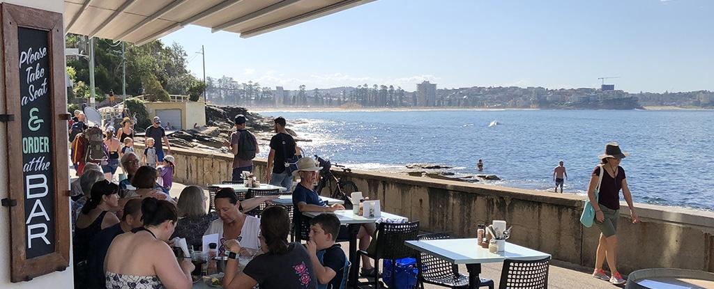 Sydney Snorkeling Cafe